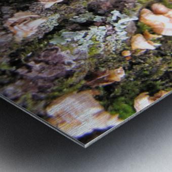 Nature Impression metal