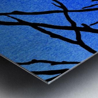 Ultramarine Forest Winter Blues II Metal print