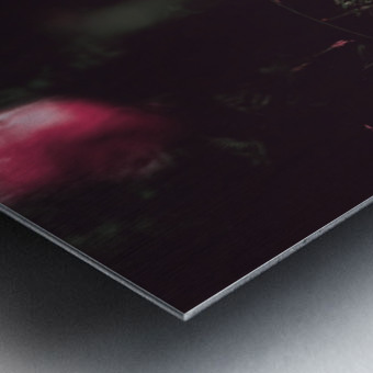 Redness  Metal print