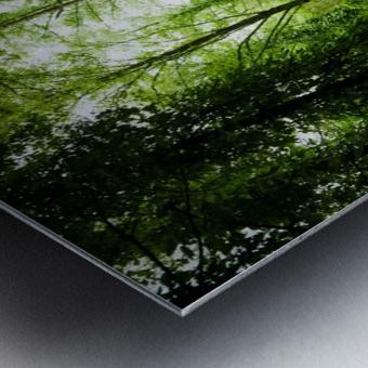 Pure oxygen  Metal print
