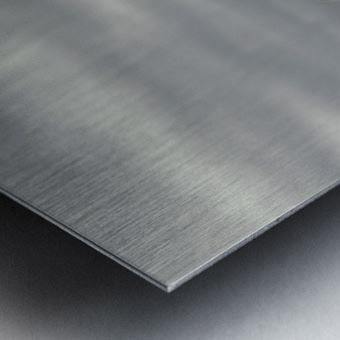 His name is Ljubisa Metal print