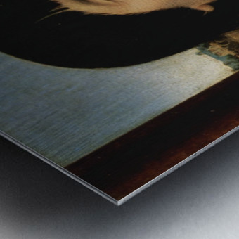 Portrait of Willem Moreel Metal print