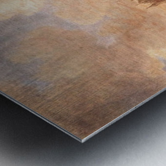 View of Leiden Metal print