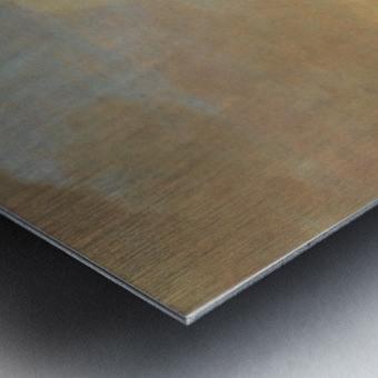 Gezicht op Rhenen Metal print