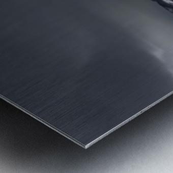 Exploring mysteries  Metal print