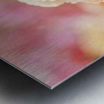 landscape_2_0973 Metal print