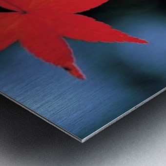 landscape_2_1134 Metal print