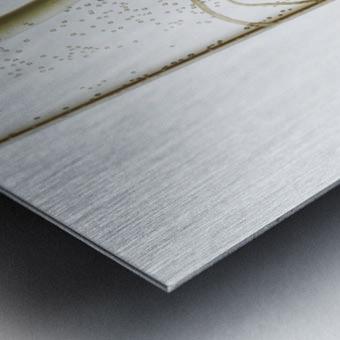 A corn seedling in a test tube on white background; Iowa, United States of America Metal print