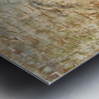 Immemorial Metal print