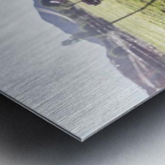 Afternoon Moos Metal print