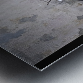 Penang Metal print