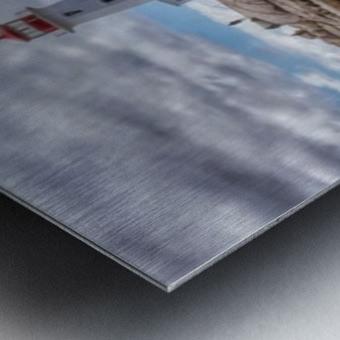 IMG_4674 Metal print