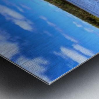 IMG_5545 Metal print