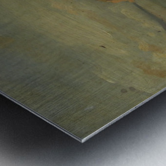 Sorento Metal print