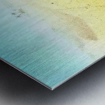 Cat Sandbox Metal print