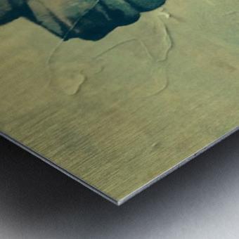 Winter Soltice Metal print