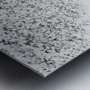 The Dark Half Metal print