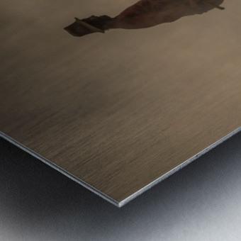 New world creation Metal print