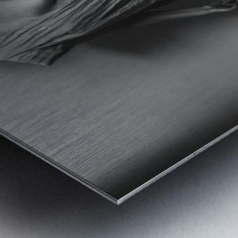 Nemesis Metal print