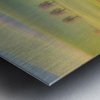 Fields Metal print