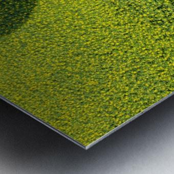 A Hundred Million Suns Metal print