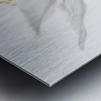 Nemorosa Metal print