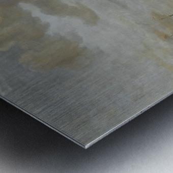 A view of Nafp Metal print