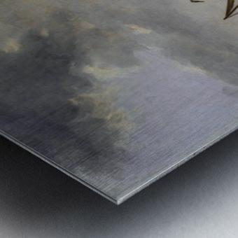Haringpakkerstoren Metal print
