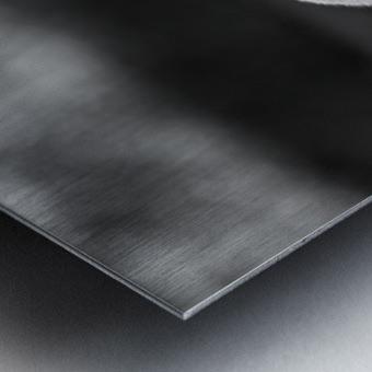 IMG_1324 Metal print