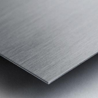 Accolade Metal print