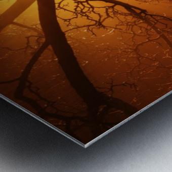 abstract sun tree Metal print