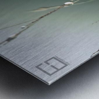 .... Metal print
