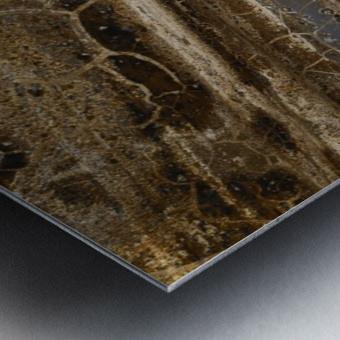 Detail Of Burnt Building Metal print