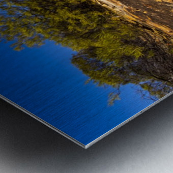 Kalbarri Canyon Metal print