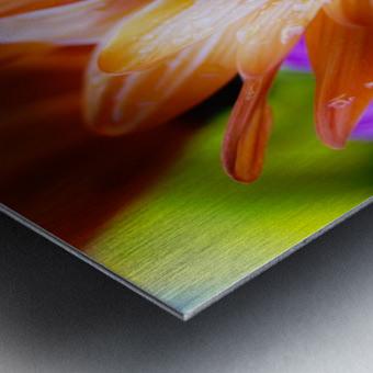 FPS-0059 Metal print