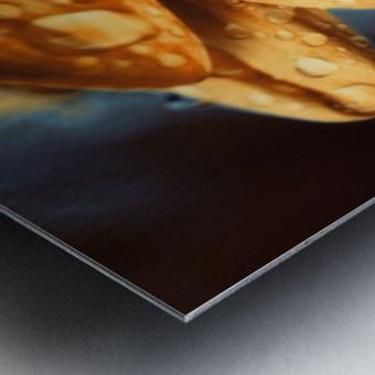 FPS-0069 Metal print
