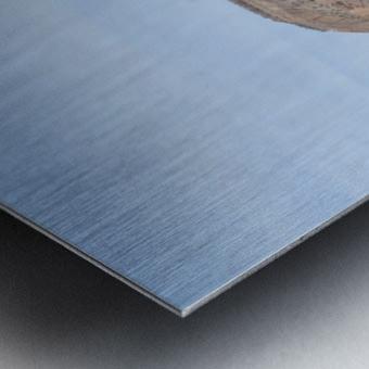 Jemez Mountains VP19 Metal print