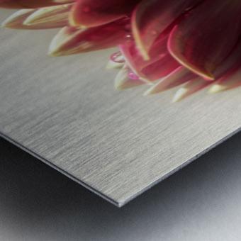 FPS-0075 Metal print