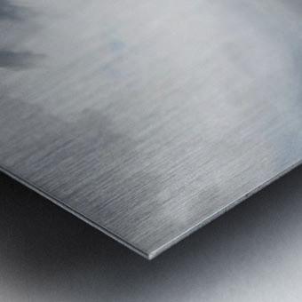 After rain - Chelsea Metal print