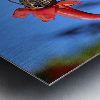 Inside the Flower Poster Edges Metal print