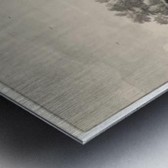 Bloemendaal Bleaching Fields with Haarlem in the Distance Metal print