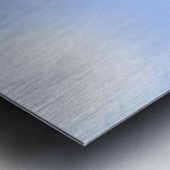 Point Bonita Metal print