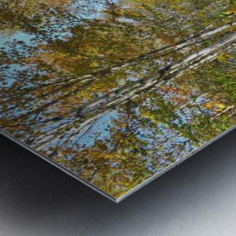 Fall foliage, Mount Pisgah, NB, Oct. 6, 2013 Metal print