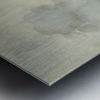 Strandgezicht Metal print