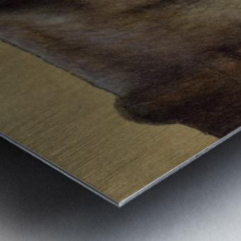 blinkers Metal print