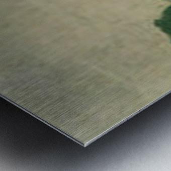 Morning mist in Romanel by Felix Vallotton Metal print