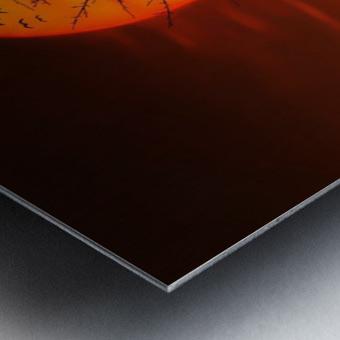 Bird on Sun Metal print