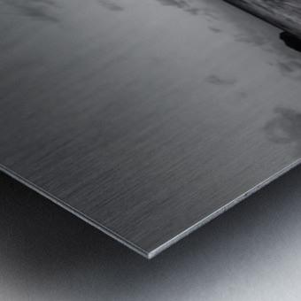 _MG_6888 Metal print