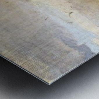 Italians Marine Metal print