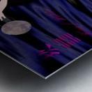 Dance of the Swans Metal print